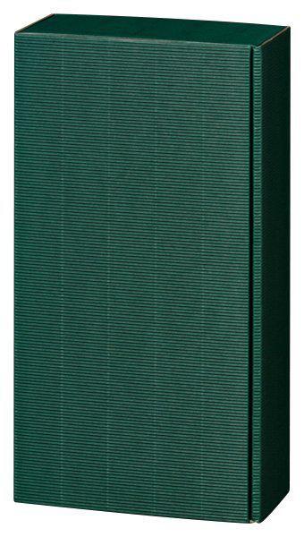 2er Geschenkverpackung - grüne Welle